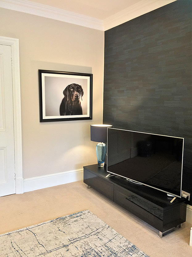 TV room with dog photo